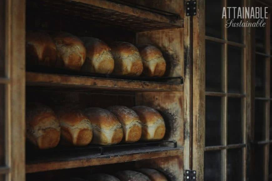 shelves of freshly made bread