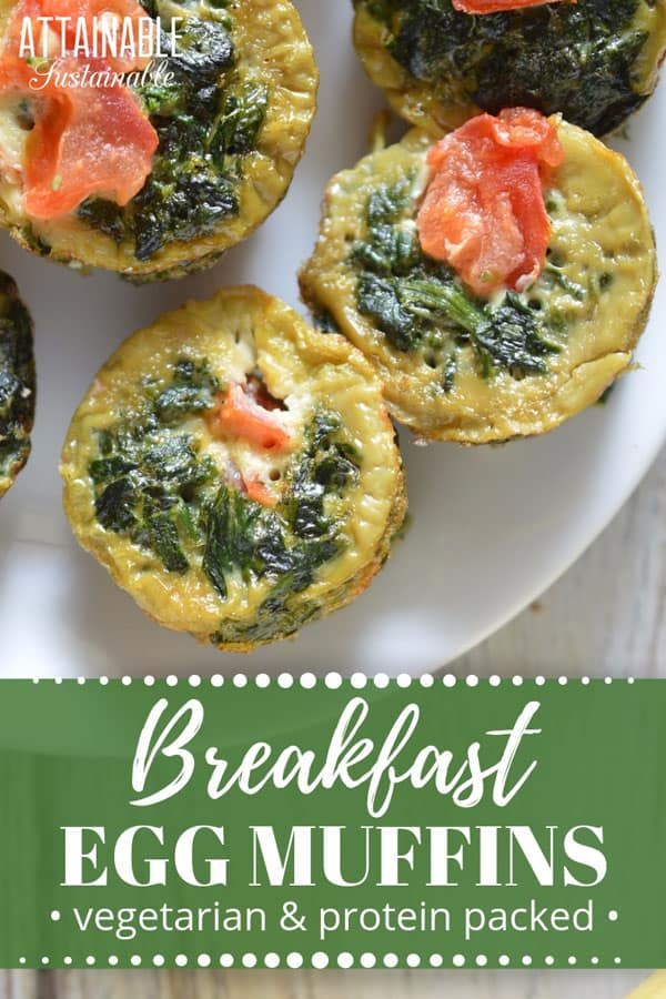 "egg ""muffins"" with spinach and tomato"