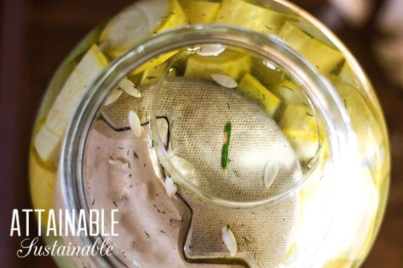 Making pickles might sound difficult, but it's not. This fermented pickle recipe features garden fresh ingredients and can be made in a snap.