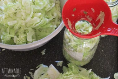 bowl of sliced green cabbage, red jar funnel with cabbage in jar