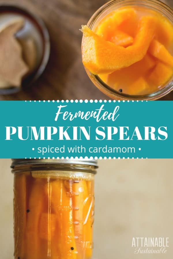 orange pumpkin spears in canning jar
