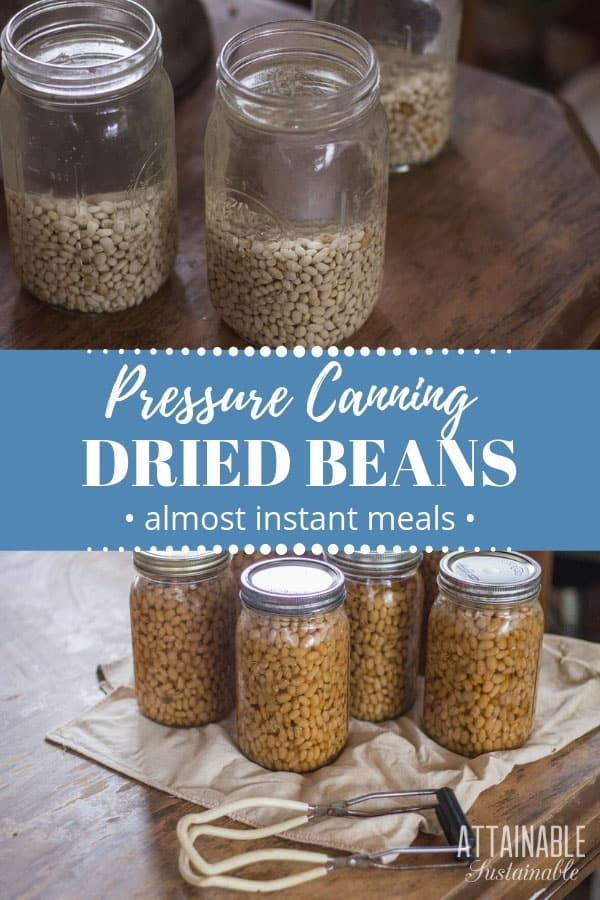 canning dried beans in glass jars