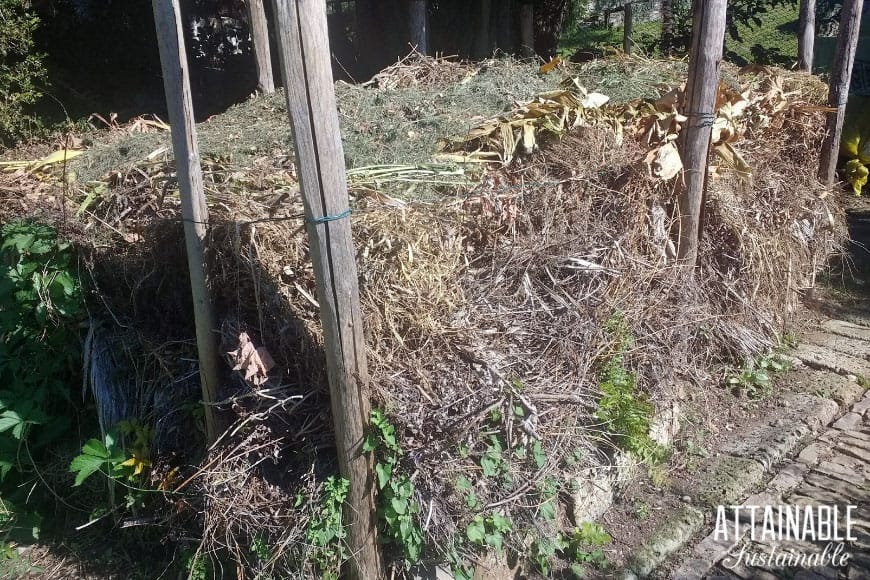 compost pile, with lots of brown rotted waste