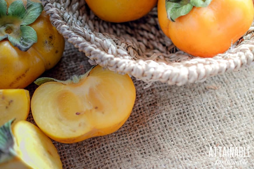 persimmons in a basket