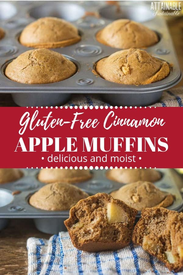 These gluten free apple cinnamon muffins are a perfect breakfast to start the day.Or pack them for lunch! #baking #breakfast #recipe