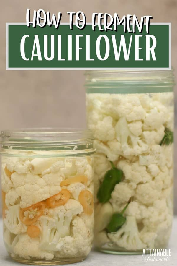 fermented cauliflower in two glass jars