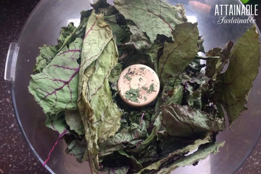 dried beet greens in a food processor bowl