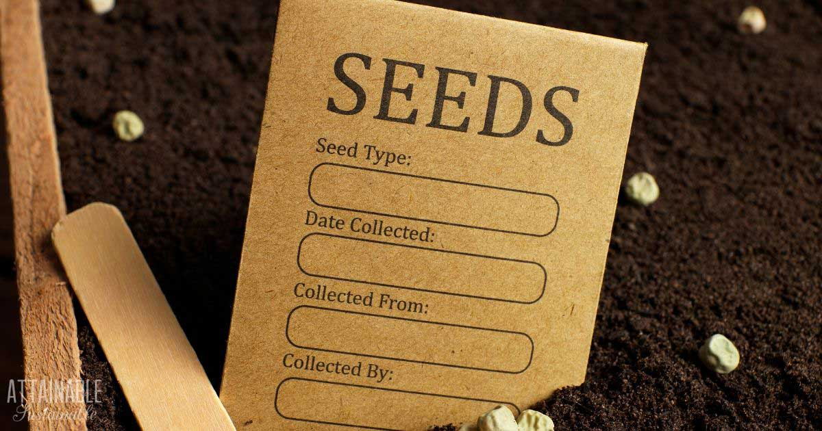 brown seed packet