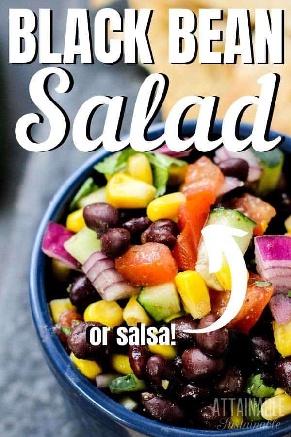 close up of chopped salad: red onions, tomato, beans, cucumber