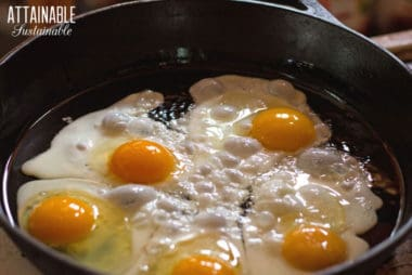 5 eggs frying in a cast iron pan