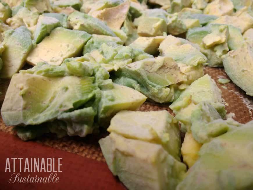 frozen avocados