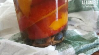 Blueberry Ginger Nectarines