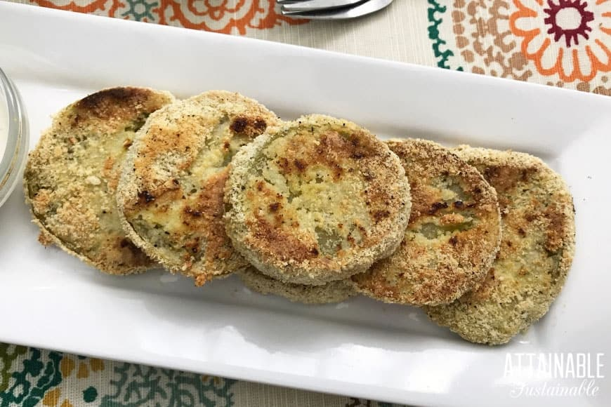 easy fried green tomatoes recipe finished and served on a white rectangular plate