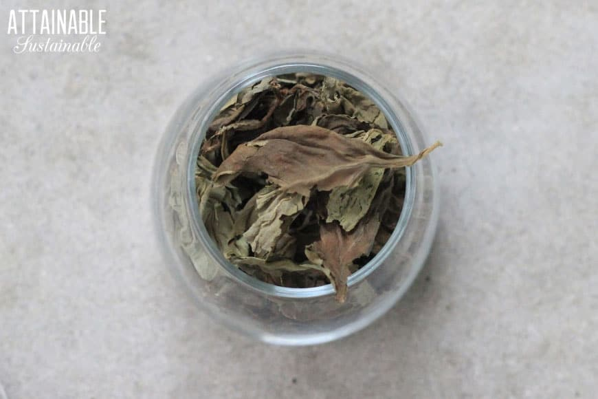dried basil in a glass spice jar from above