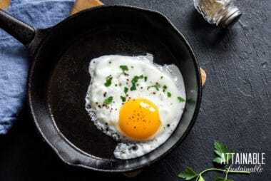 single fried egg in a cast iron pan