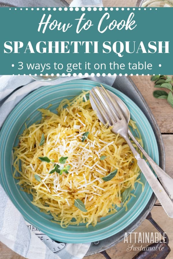 spaghetti squash on a teal plate, topped with herbs and cheese