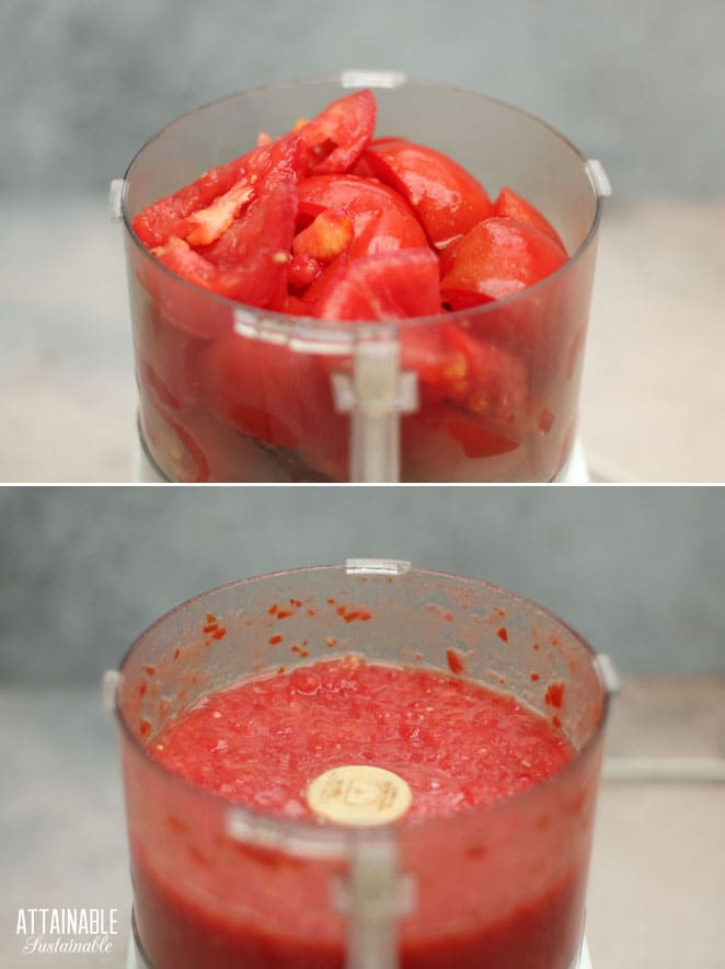 tomatoes in a food processor, before and after processing