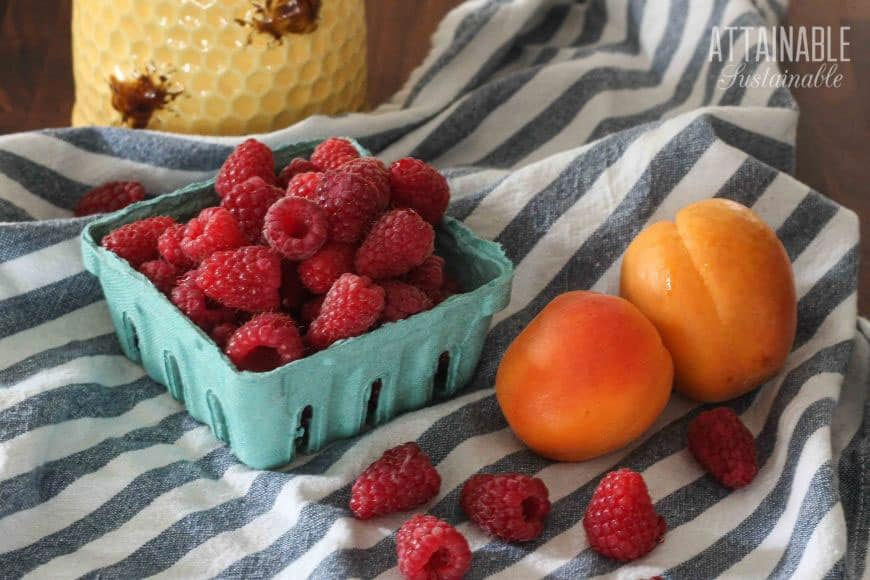 red raspberries in a green produce box with fresh apricots on a blue & white striped towel