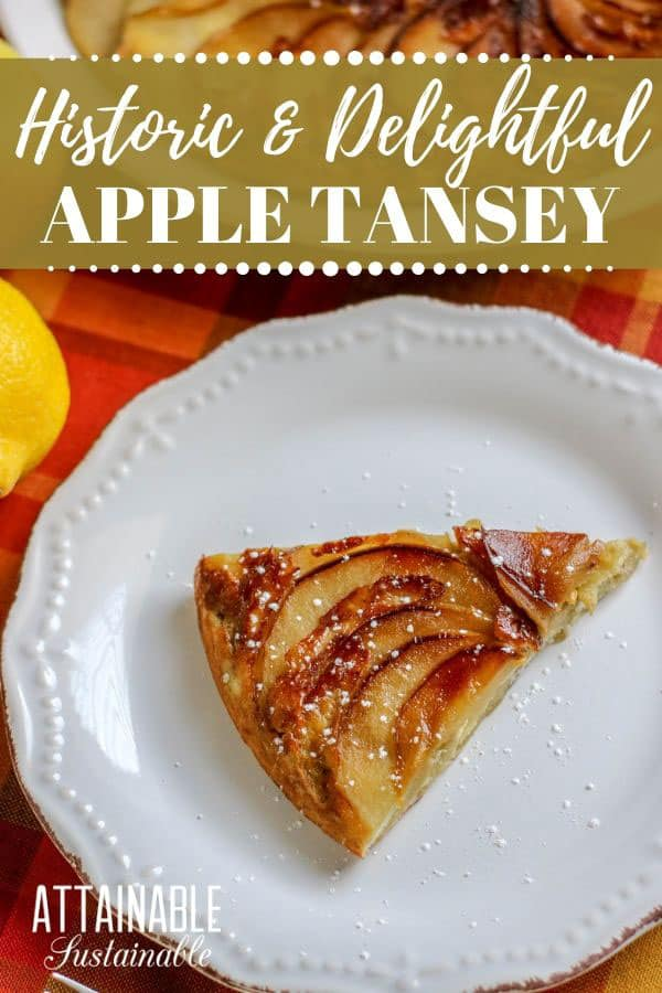 apple tansey slice in a white dish