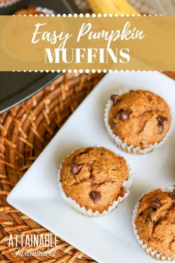 pumpkin banana muffins from above