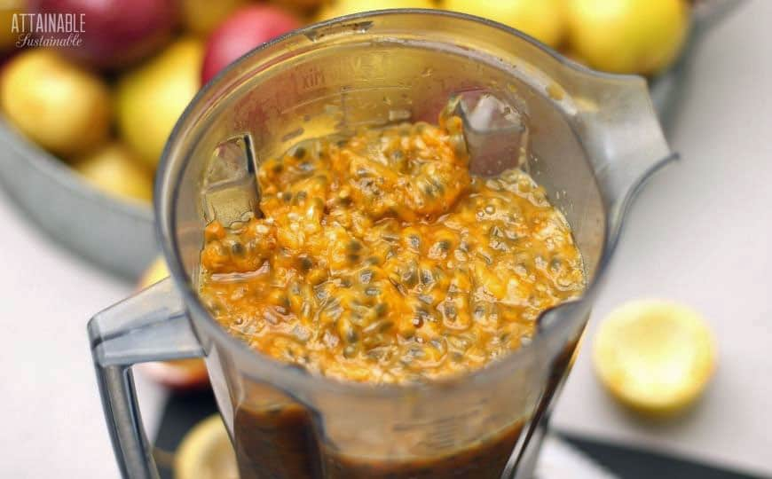 passion fruit pulp in a blender