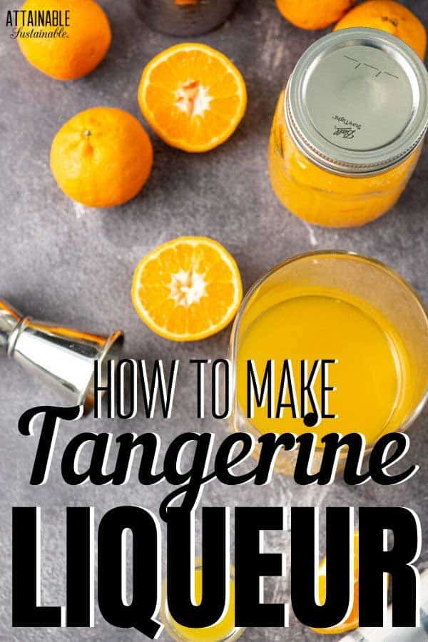 ingredients for homemade tangerine Triple Sec from above - sliced oranges