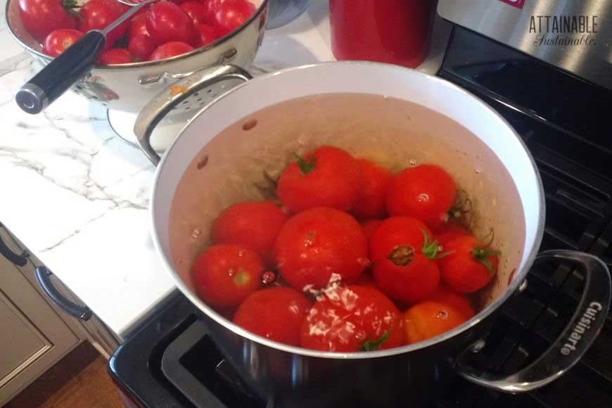 tomatoes simmering in a pot