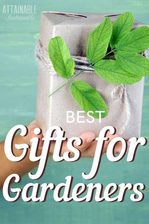 hand holding a paper wrapped gift with a sprig of greens - gardening gifts