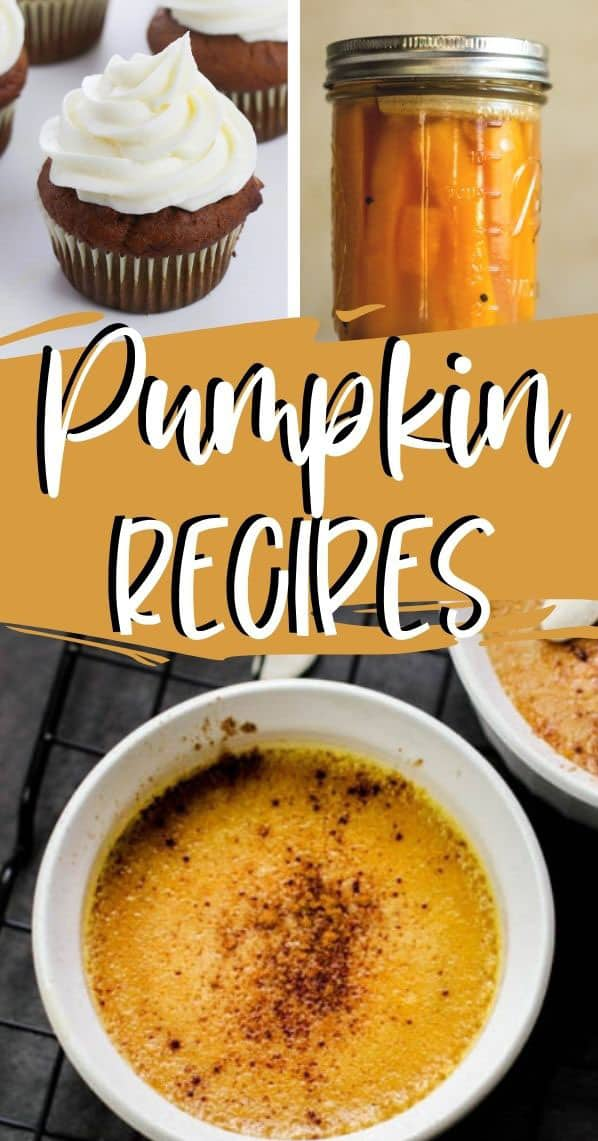 collage with: pumpkin cupcake, pumpkin spears, pumpkin custard recipe