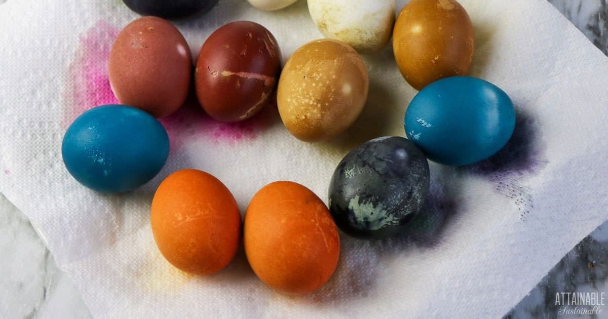 colorful naturally dyed eggs on a paper towel