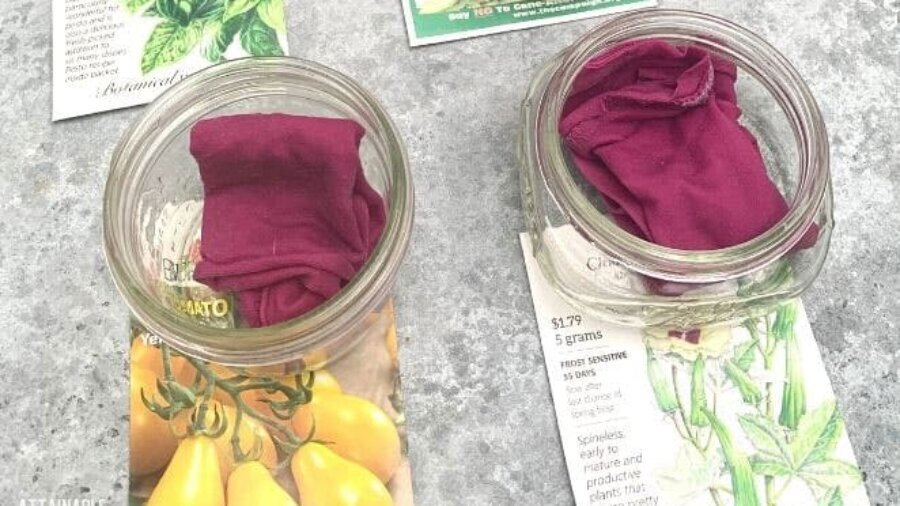 jars with pink fabric inside, sitting on seed envelopes