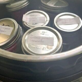 jars in an instant pot