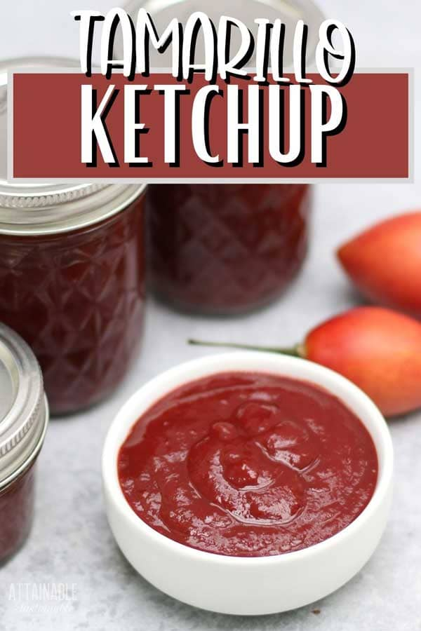 ketchup (recipe for canning) in a white dish with canning jars surrounding it