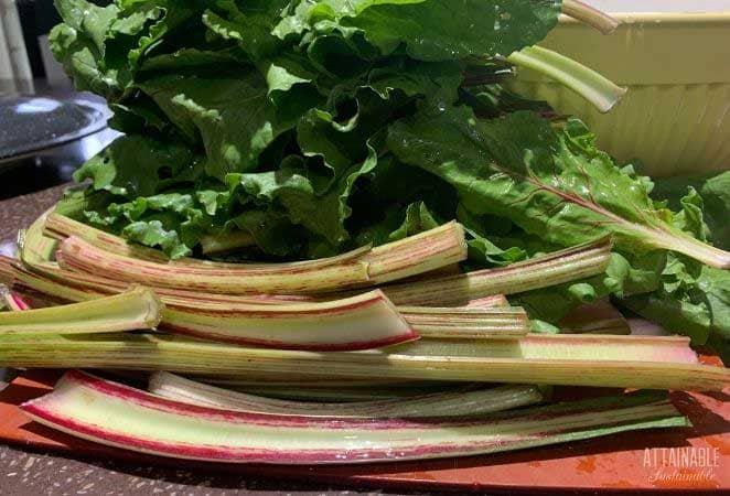 beet stalks and beet leaves