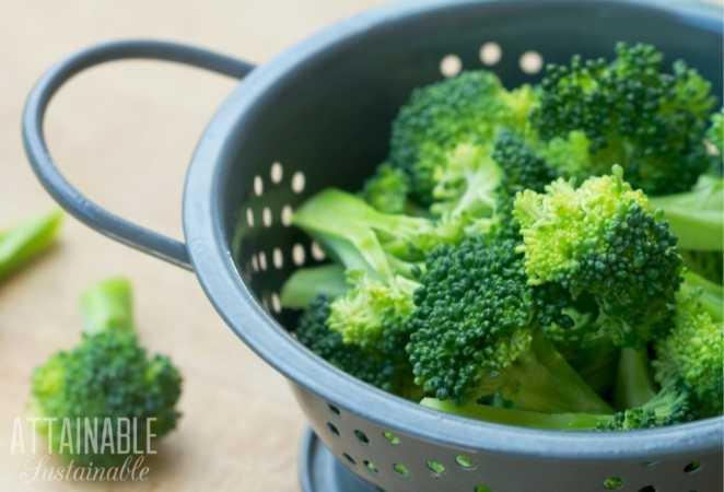 Broccoli in a silver colander