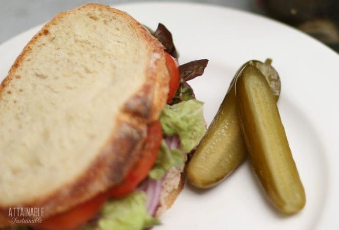 sandwich on crusty bread with a side of dill pickles