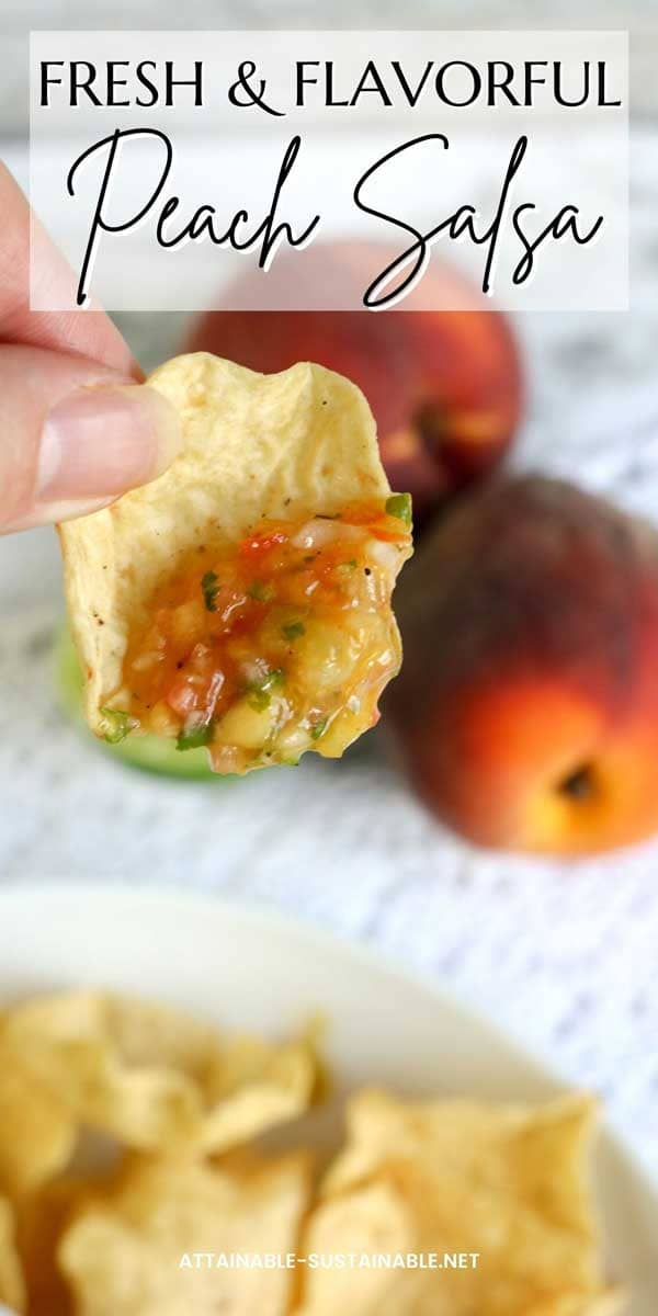 tortilla chip in a hand with salsa on it