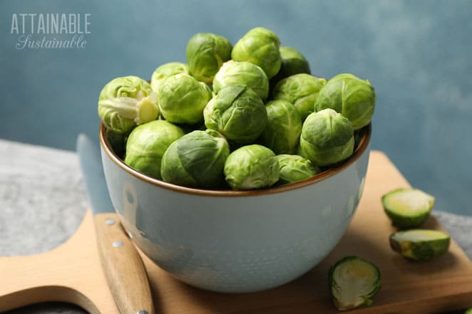 bowl of vegetables that look like tiny cabbage