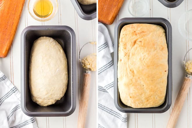 loaf of bread rising in pan and baked later